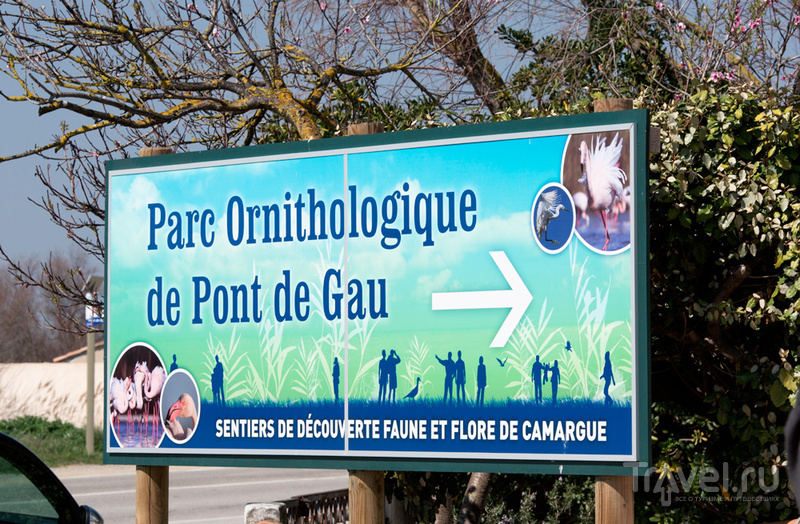 Орнитологический парк Понт де Го, Франция / Фото из Франции