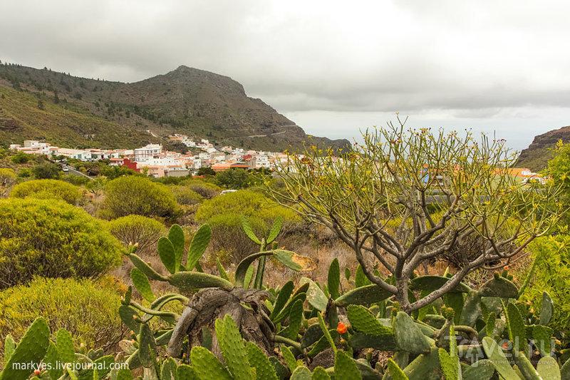 Тенерифе. Гарачико / Фото из Испании