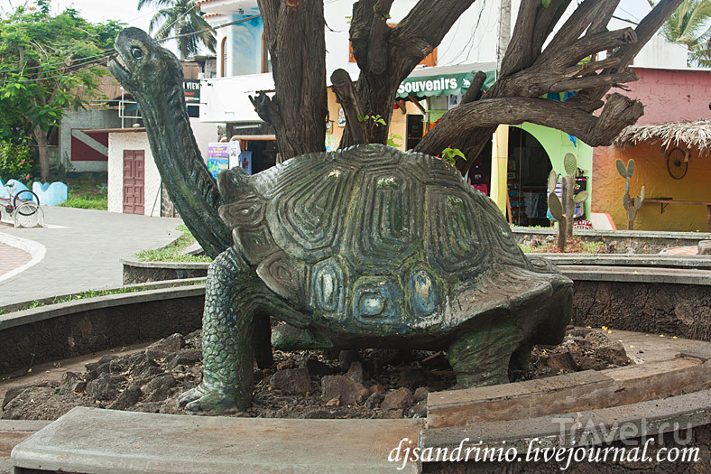 The Galápagos Islands, Baltra, Santa Cruz / Эквадор