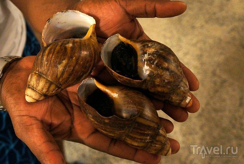 Знакомство с нигерийской кухней / Нигерия
