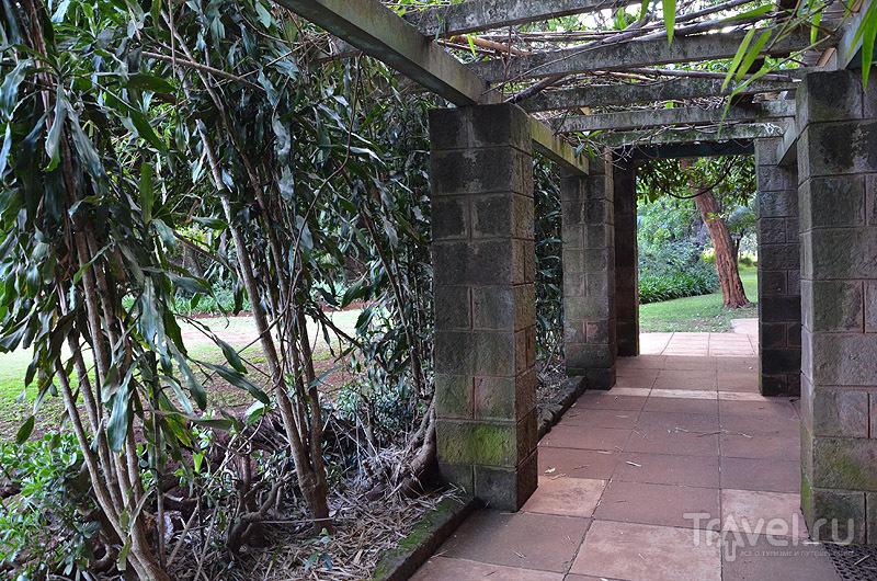 Галерея, дом-музей Карен Бликсен / Фото из Кении