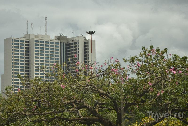Парк Uhuru в Найроби / Фото из Кении