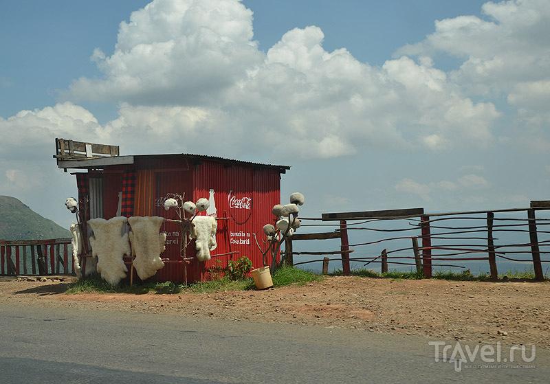 Шкуры - популярный сувенир / Фото из Кении