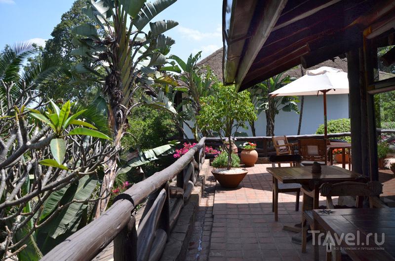 Бар в Safari Park Hotel / Фото из Кении