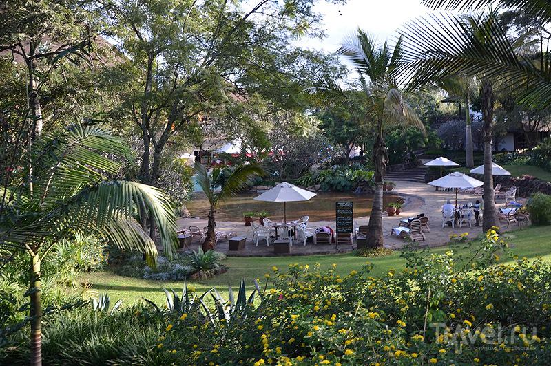 Ресторан у бассейна, Safari Park Hotel / Фото из Кении