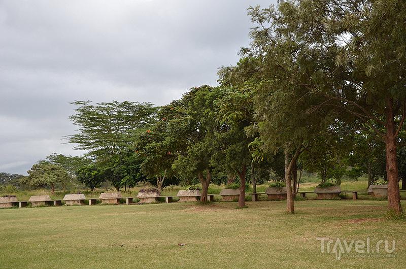 Лужайка в Uhuru Gardens / Фото из Кении