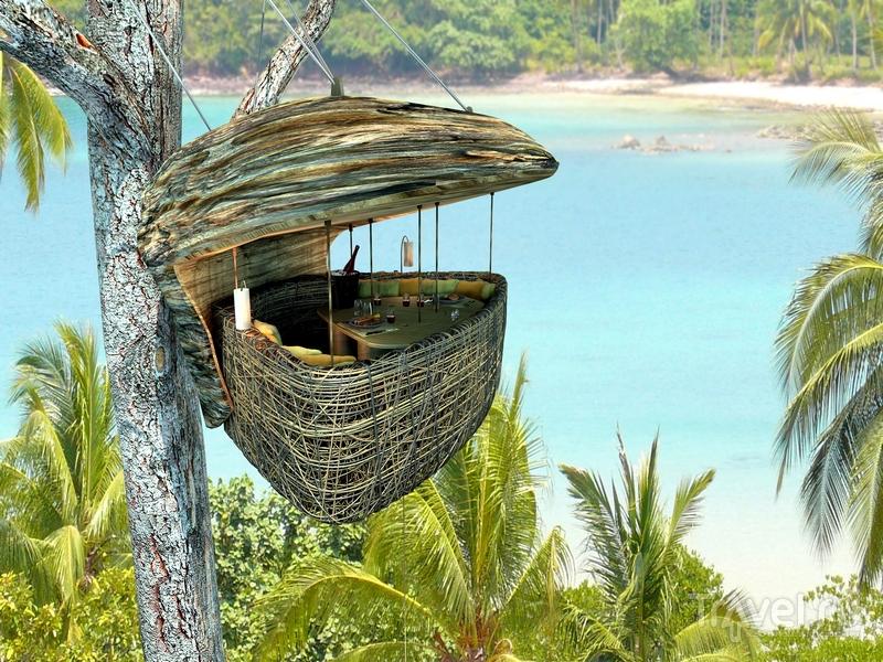 Необычный ресторан Treepod Dining расположен в кроне деревьев на тайском острове Кут / Таиланд