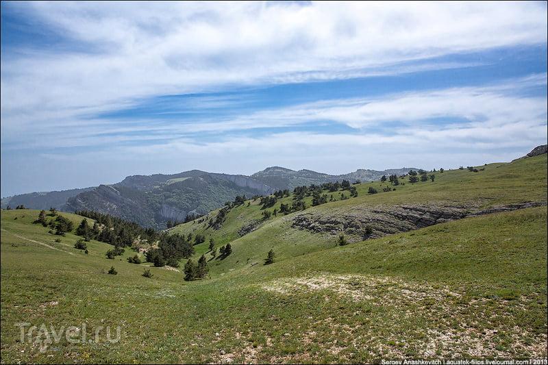 В Крымском природном заповеднике, Украина / Фото с Украины