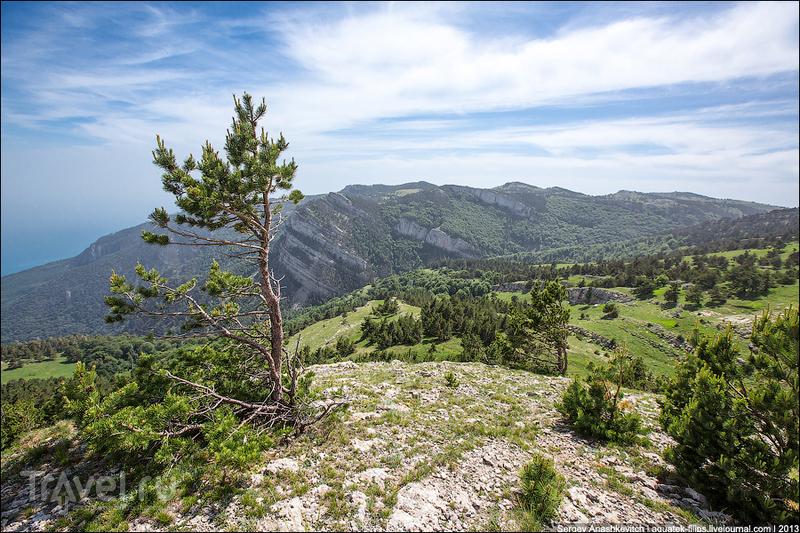 Никитская яйла в Крымском природном заповеднике, Украина / Фото с Украины
