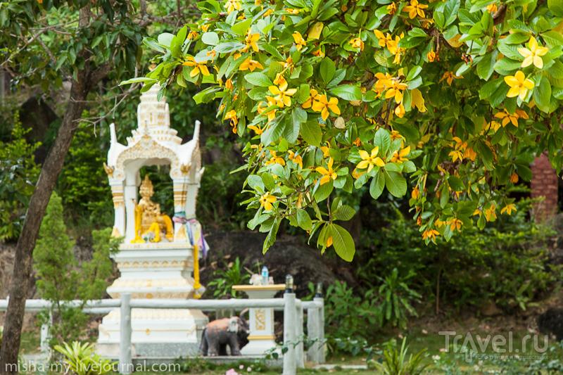 Панган. Виды с холма и заброшенная гостиница / Таиланд