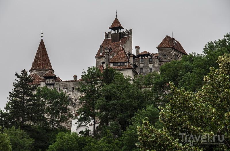 Замок Бран, Румыния / Фото из Румынии