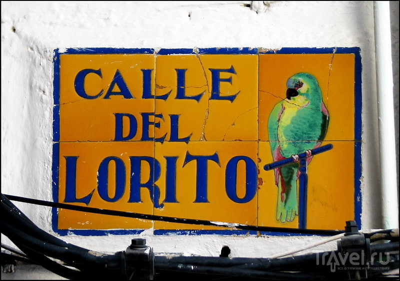 Улица Calle del Lorito в Тарифе, Испания / Фото из Испании