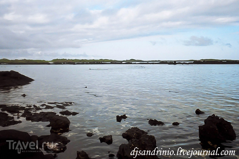 The Galápagos, Isabela, The first snorkeling / Эквадор