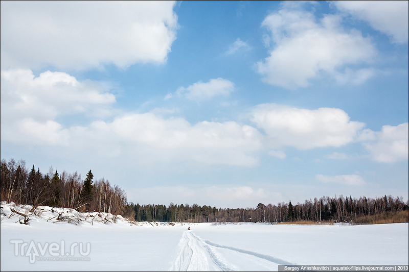 Река Большого Юган, Россия / Фото из России