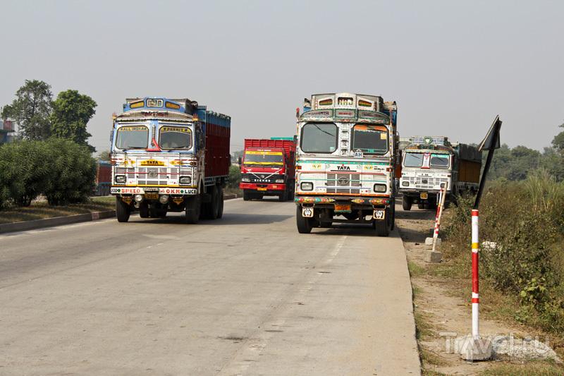 На дороге в Индии / Фото из Индии