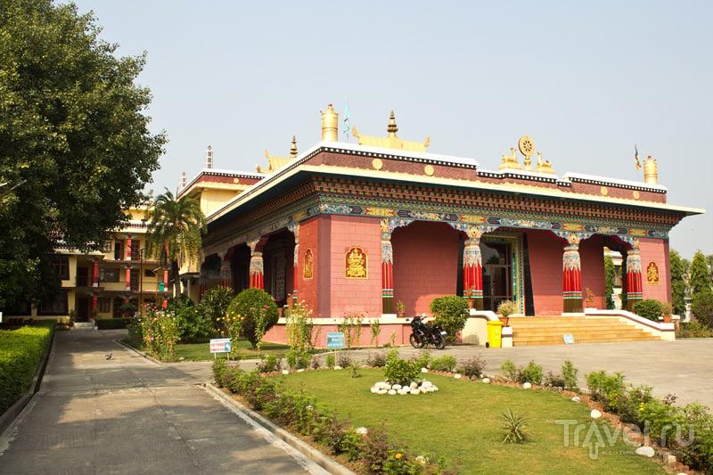 Тибетский монастырь Шэчен (Shechen) / Фото из Индии