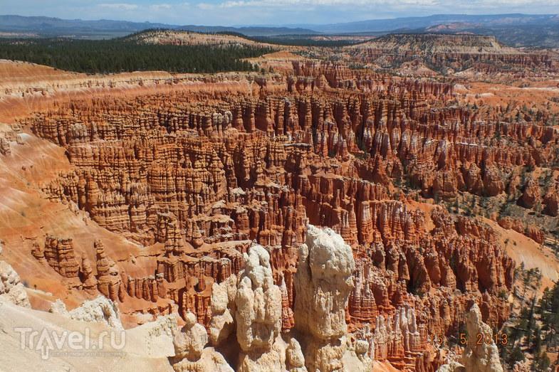 Брайс-Каньон в штате Юта, США / Фото из США