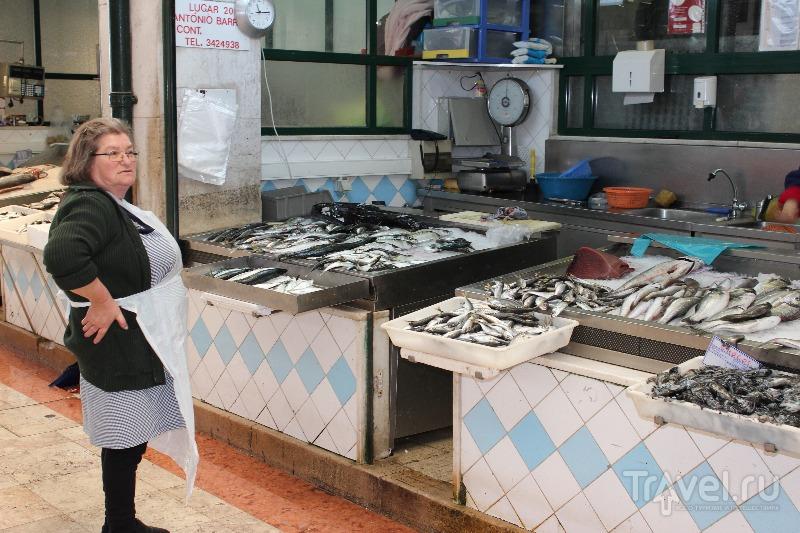 Рынок Рибейра в Лиссабоне, Португалия / Фото из Португалии