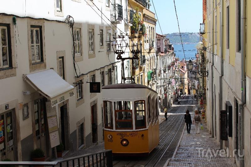 Лиссабон – любовь с первого взгляда / Фото из Португалии