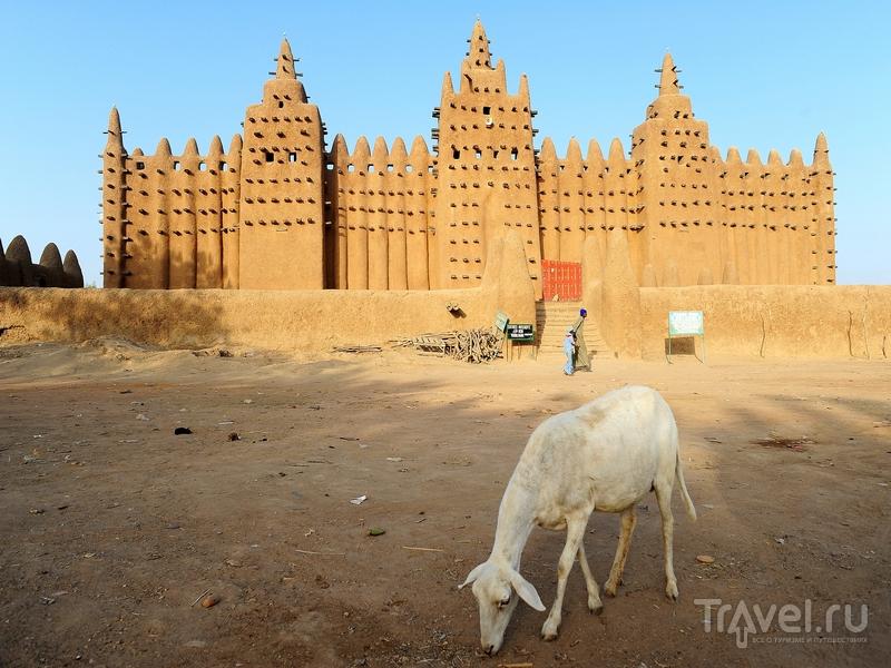 Соборная мечеть в Дженне - памятник судано-сахельского архитектурного стиля, Мали / Мали