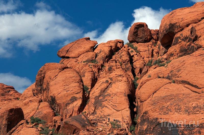 Каньон Красных Камней, США / Фото из США