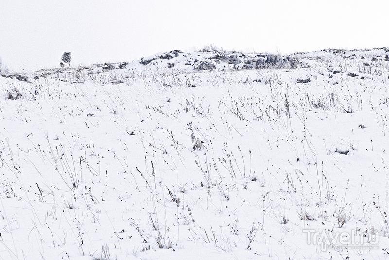 Краснодарский край. Лаго-Наки 2011 / Фото из России