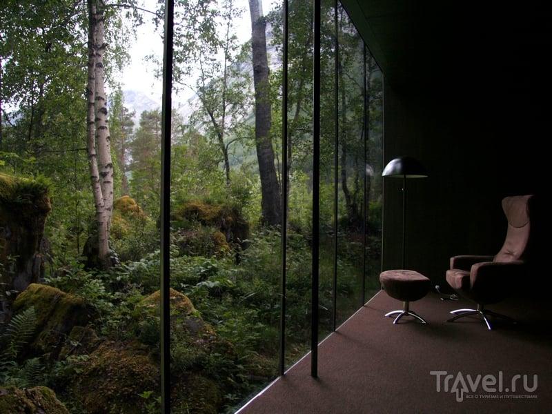В отеле Juvet Landskapshotell впору почувствовать себя добровольным затворником, Норвегия / Норвегия