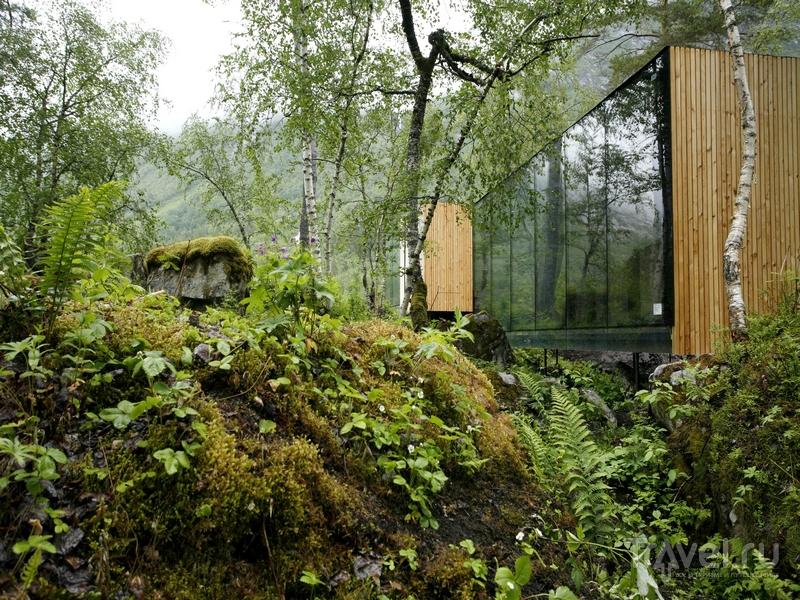 Строительство Juvet Landskapshotell в Норвегии происходило с использованием экологически чистых материалов / Норвегия