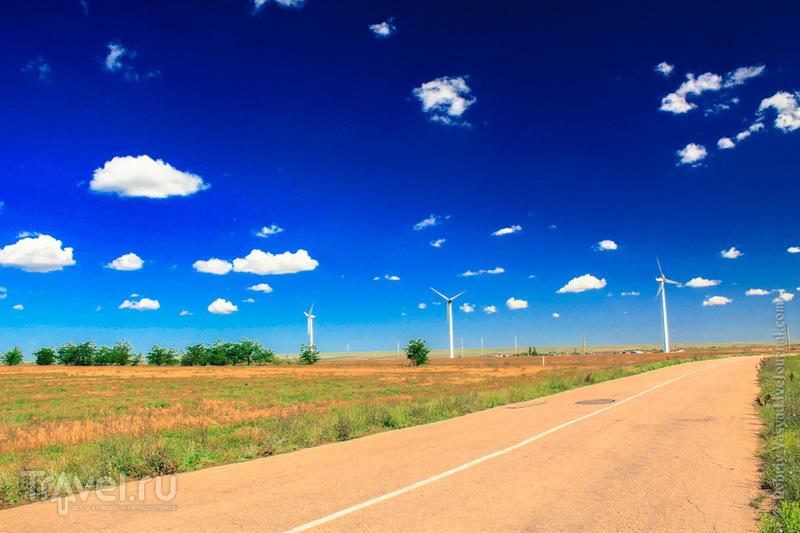 Комплекс Тарханкутской ветряной электростанции на полуострове Крым, Украина / Фото с Украины