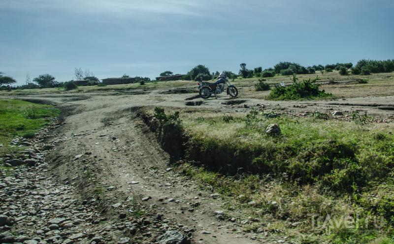 Национальный парк Масаи-Мара в мае / Фото из Кении