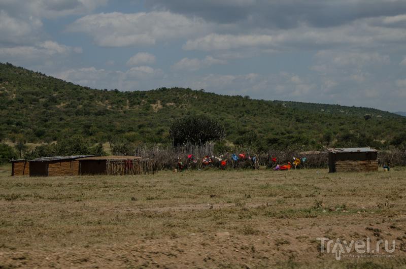 Деревня масаев в Кении / Фото из Кении