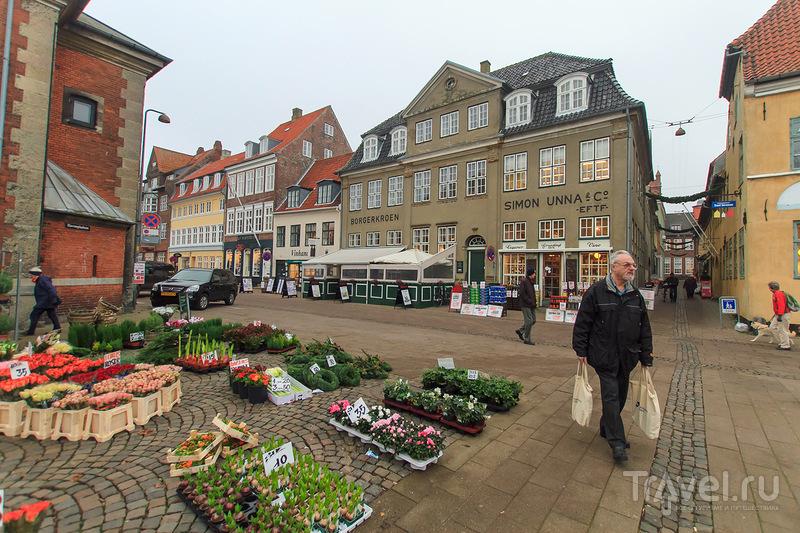 В городе Хельсингер, Дания / Фото из Дании