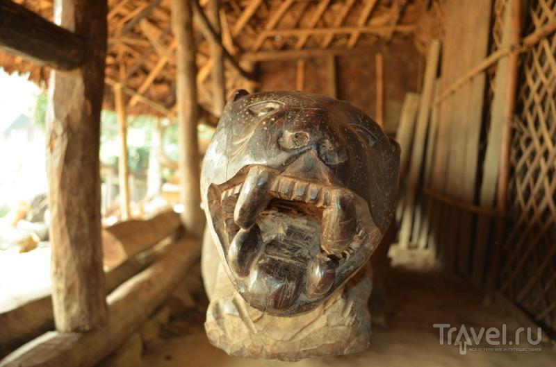 Племя Коньяк