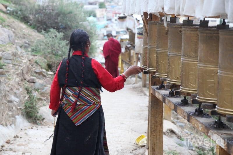 На внедорожниках в Тибет. Шигадзе, мыши и сушеные головы / Китай
