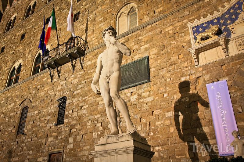 Статуя Давида на площади Синьории во Флоренции, Италия / Фото из Италии