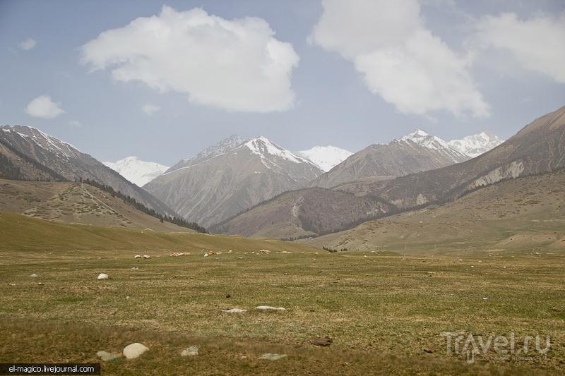 Семеновское ущелье, Киргизия / Фото из Киргизии