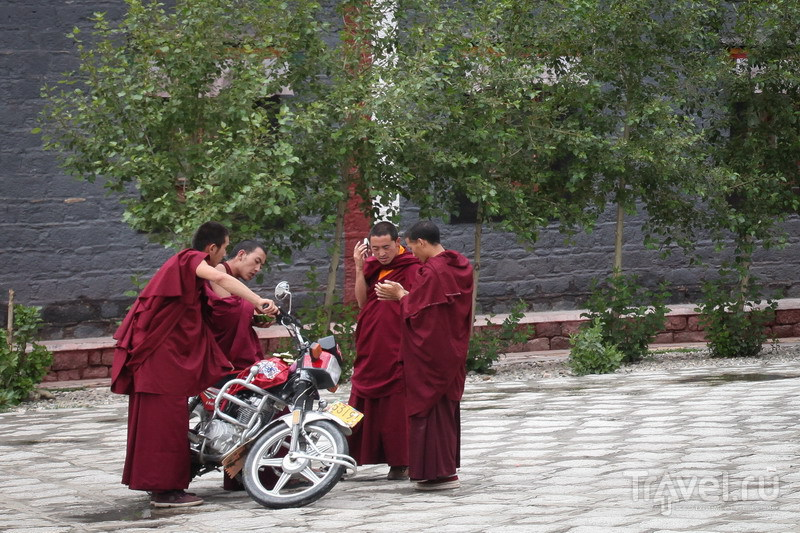 На внедорожниках в Тибет. Буддистская некромантия в Сакье / Китай