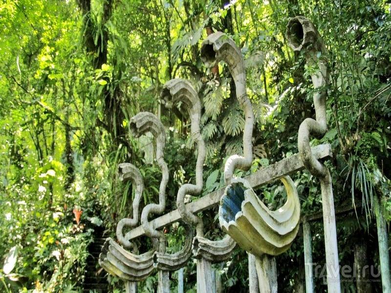 Если посещение садов приходится на летние месяцы, лучше запастись репеллентами, Мексика / Мексика