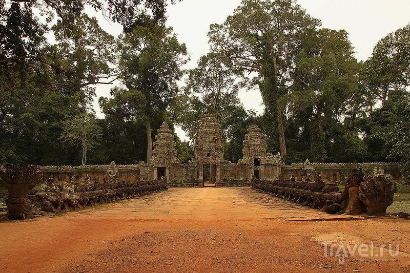 Храм Та-Сом, Камбоджа / Фото из Камбоджи