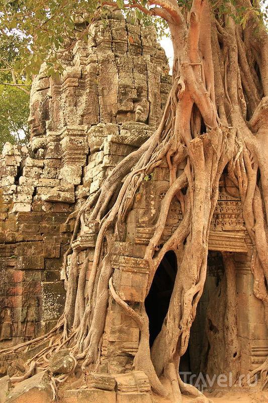 The Spirit of Indochina. Та-Сом и Тхомманон / Фото из Камбоджи