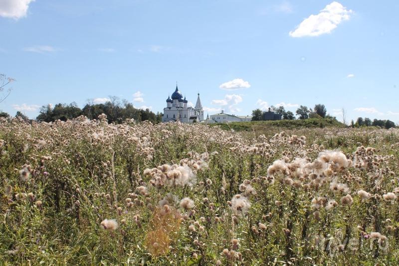 Ильинский луг в Суздале, Россия / Фото из России