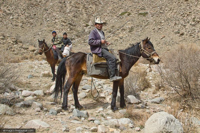 Тамга-Таш - буддистские камни на севере Киргизии / Фото из Киргизии