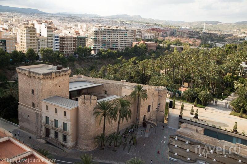 Испания. Эльче / Испания