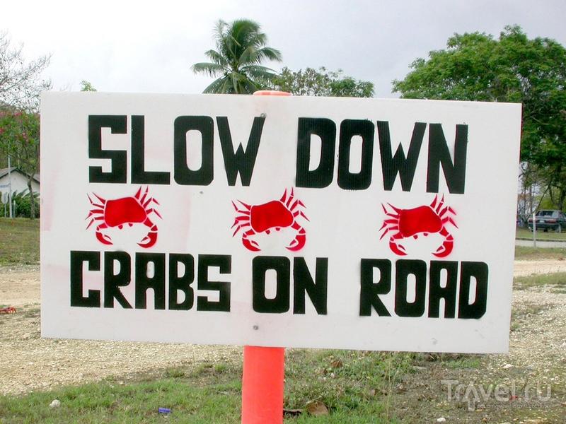 Дорожные знаки, сообщающие о миграции крабов, на австралийском острове Рождества / Австралия