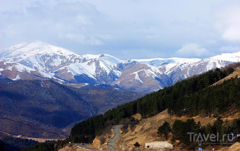 Дилижанский национальный парк / Армения