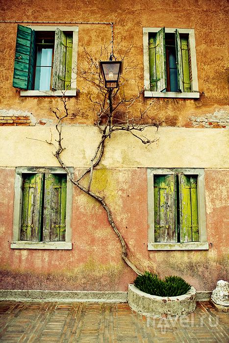 На острове Торчелло, Италия / Фото из Италии