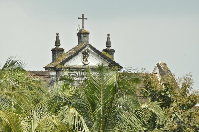 Базилика Доброго Иисуса в Гоа, Индия / Фото из Индии