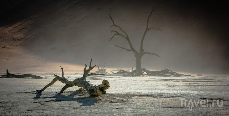 Пустыня Намиб - Соссуфлей / Фото из Намибии