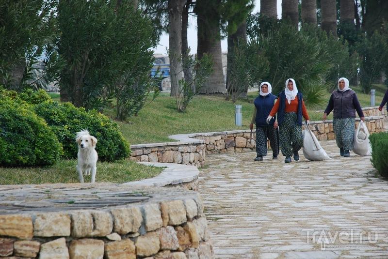 Нетипичная поездка в Памуккале / Турция