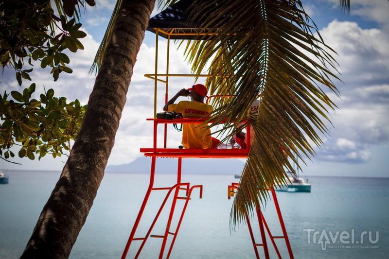 Сейшелы, остров Маэ. Регата / Сейшелы